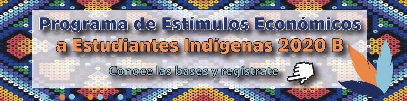 programa de estímulos económicos a Estudiantes indígenas