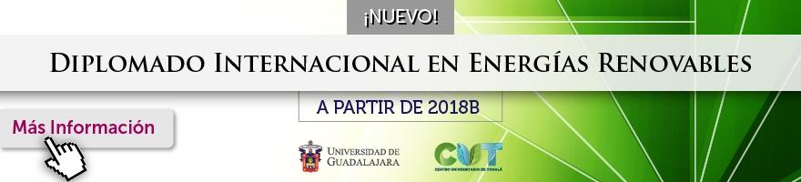 Diplomado Internacional en Energías Renovables