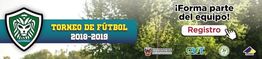 Torneo de Fútbol 2019